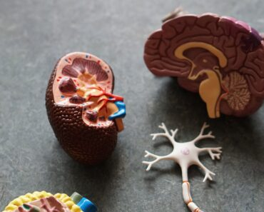 The Keto and Kidneys