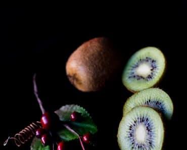 raw diet cooking methodology