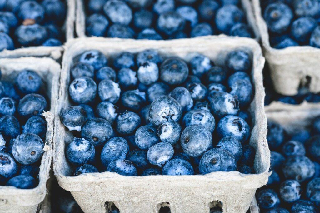 volumetrics diet plan - blueberries