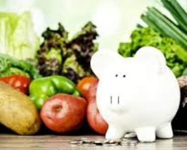 vegetarian meal plan on budget