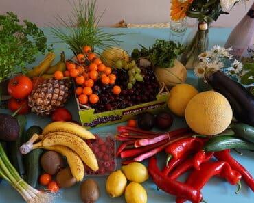 Vegan autoimmune diet