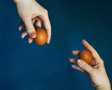 Egg Diet Meal Plan