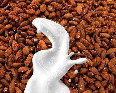 Is Almond Milk Paleo