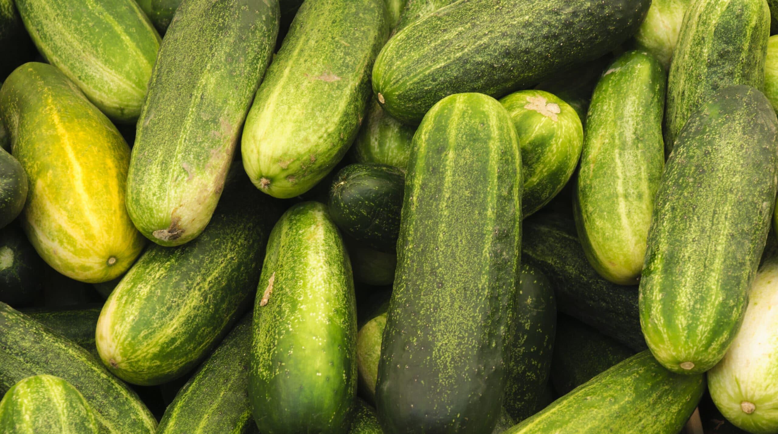 List of keto vegetables